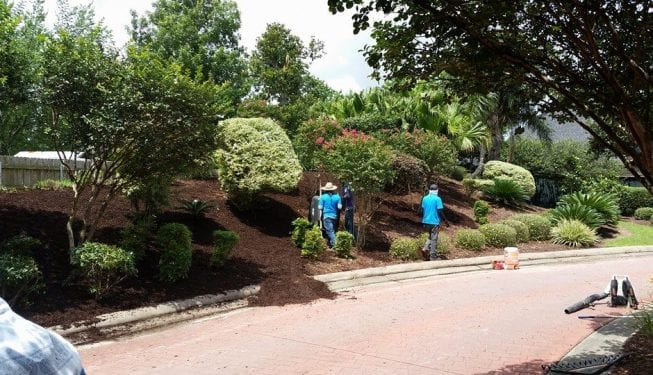 Tender Care Lawn Services | Custom Landscape Design And Implementation