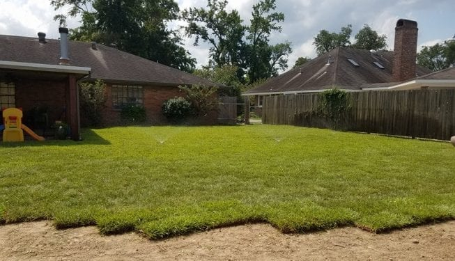 Tender Care Lawn Services | New Sod Installation