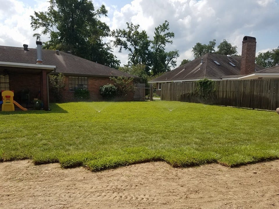 Tender Care Lawn Services   New Sod Installation