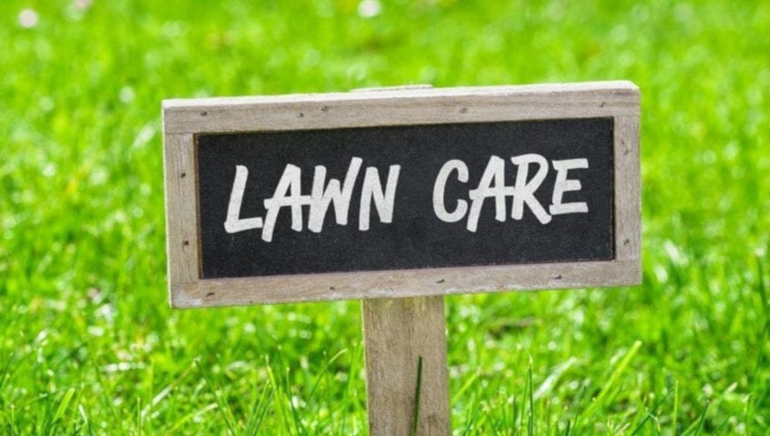 Tender Care Lawn Care Services | Grass Cutting Services, Fall Lawn And Garden Care