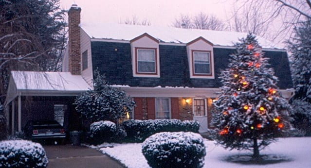 Landscaping companies recommend living Christmas trees