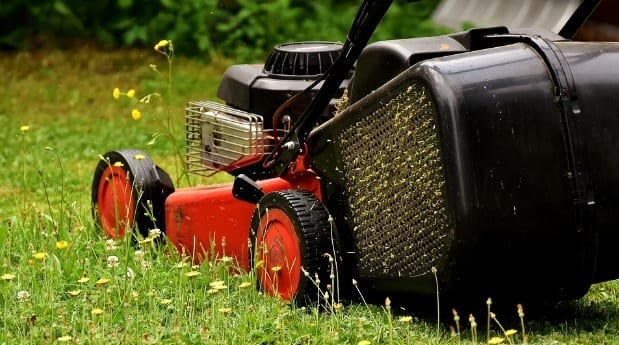 Tender Care's Grass Cutting Services and Soil Feeding