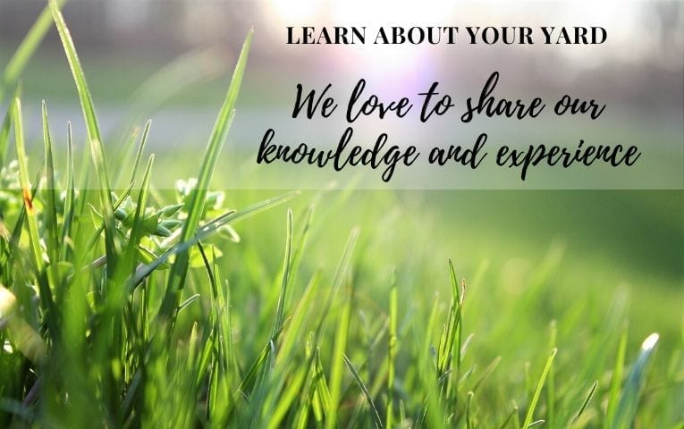 Tender Care Lawn Services | Learn About Lawn Care And Landscaping Services