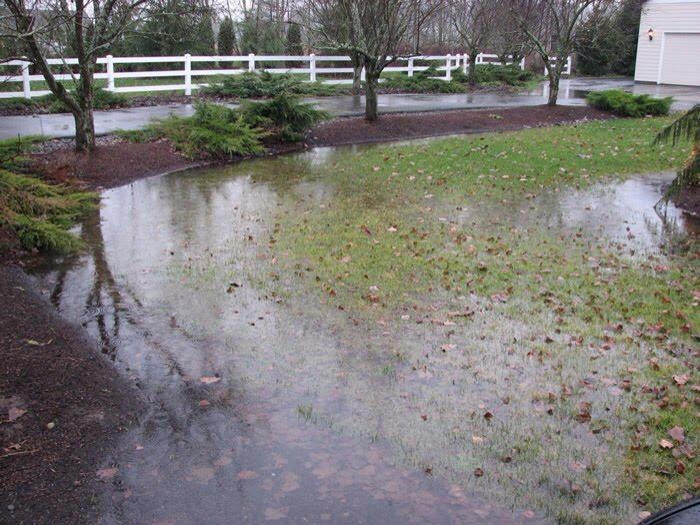 Tender Care Lawn Services   Custom Drainage Solutions For Water Logged Yards