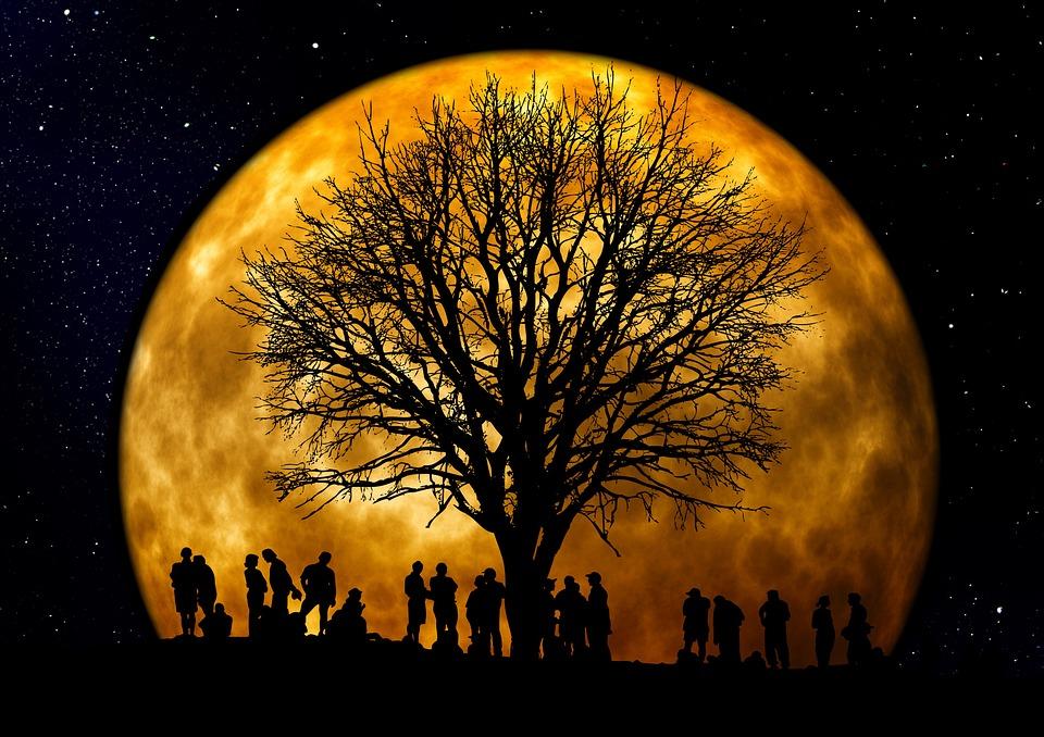 moon in astrology