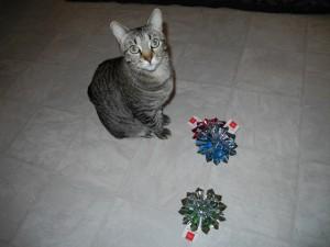 I like my catnip toys better, thanks anyway!