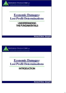 Icon of CLE-Slides Damages & Lost Profits