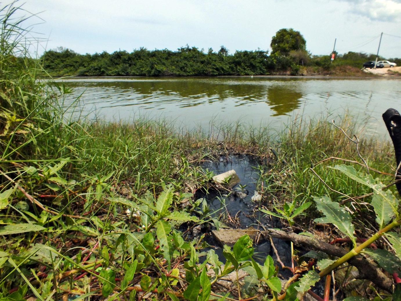Lagoa está sendo poluída por esgoto residencial em Bambuí. (Foto: João Henrique | Maricá Info)