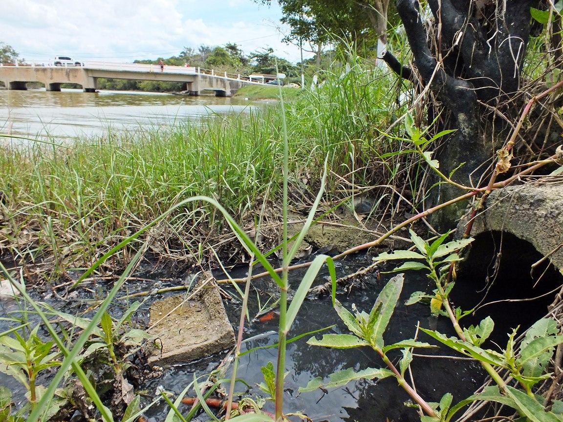 Esgoto residencial cai in natura na lagoa. (Foto: João Henrique | Maricá Info)
