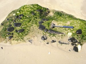 Beachrocks de Jaconé. (foto: Renato Ramos | Panoramio)