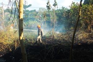 Incêndio atingiu terreno ao lado de creche próximo ao Centro de Maricá. (foto: Mauro Luis / Maricá Info)
