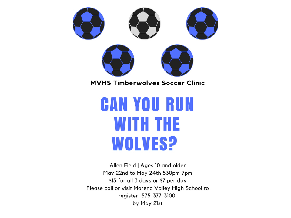 Soccer Clinic Flyer