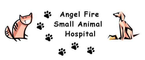 Small Animal Hosp