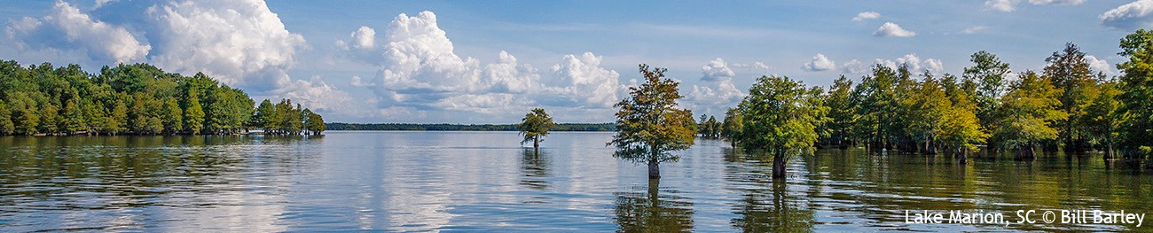 Santee Lakes_B1_0881