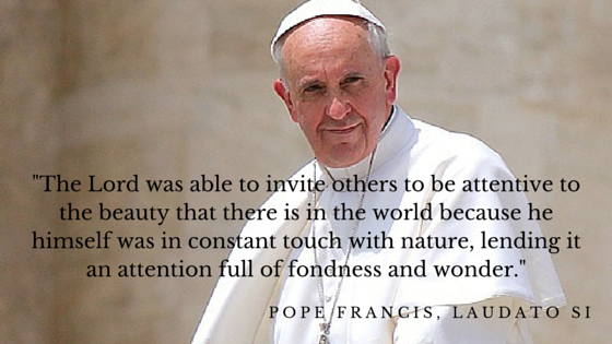 Pope Encyclical Quote