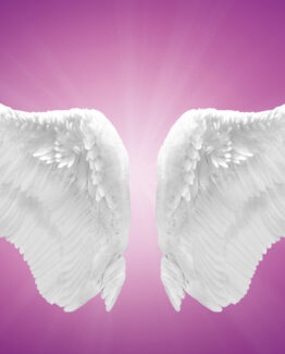 November Psychic Sale – 3 Card Angel Tarot Card Reading On Your Love Life