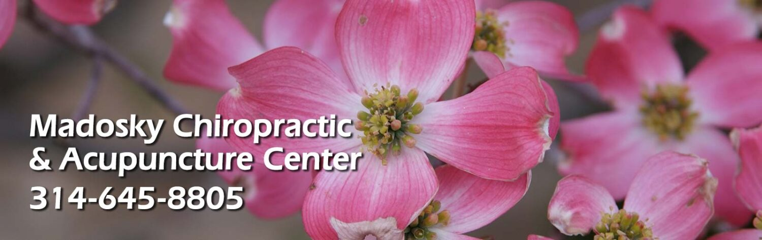 Madosky Chiropractic & Acupuncture Center