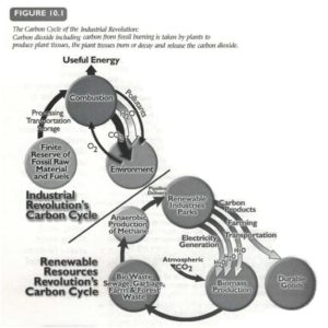 carboncycle_fig-10-1