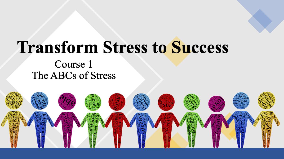 Transform Stress to Success Evaluation Copy