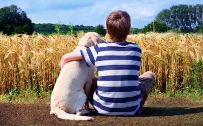 Human-Animal Partnership