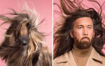 Uncanny Resemblance