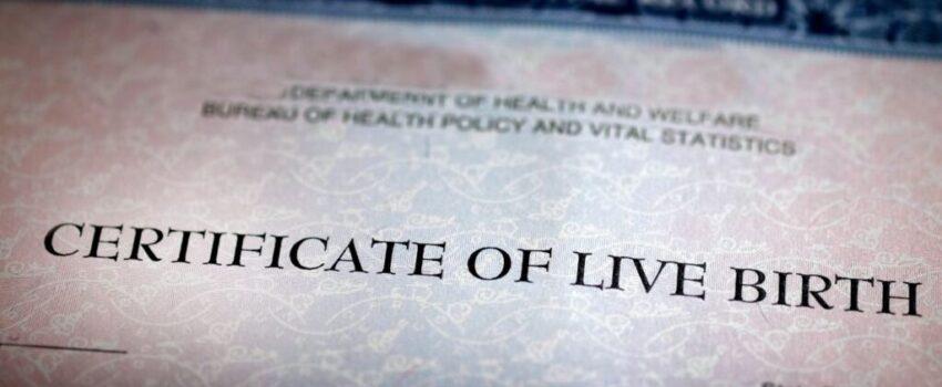 Birth Certificate view in the desktop computer