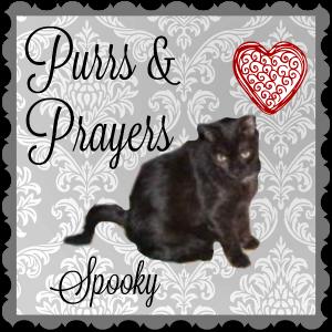 spooky-a
