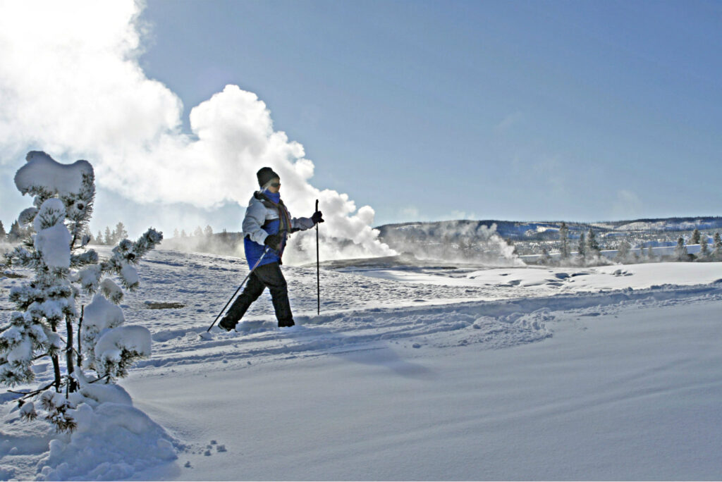 cross country skiing in yellowstone in the winter