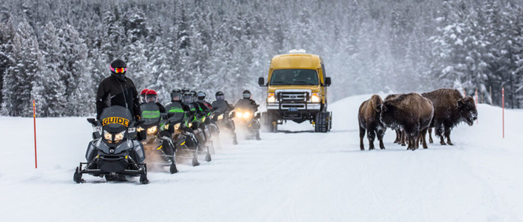 snowcoaches in yellowstone in the winter