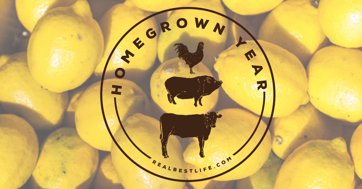 lemons Homegrown Year Kelly Maher Farm Living Life