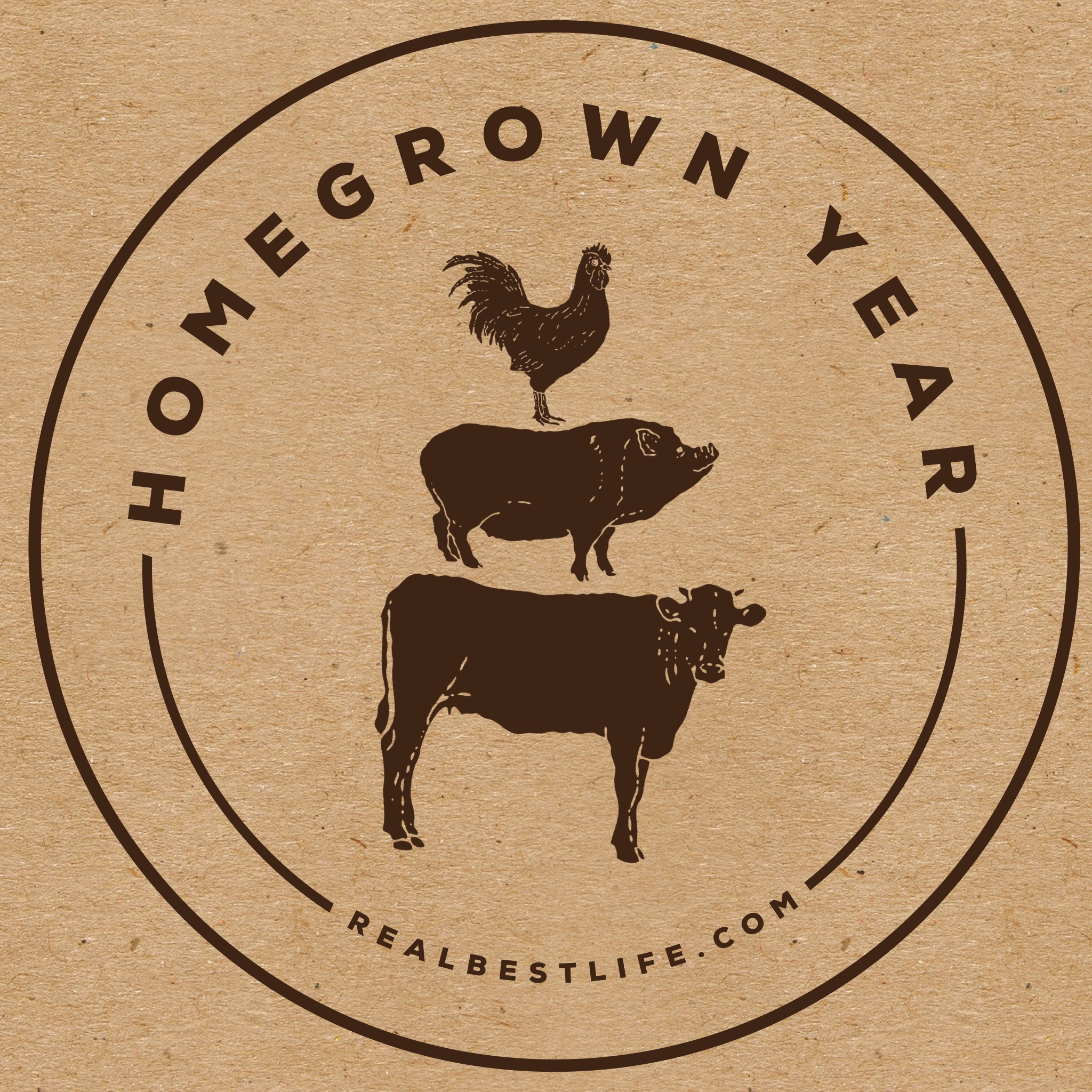 homegrown homestead kelly maher