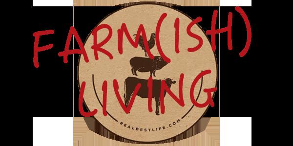 Farm(ish) Living HanziPen SC Bold