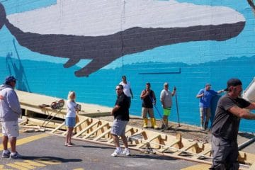 The Whale Wall Is Currently Being Re-Painted