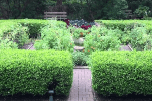 Hereford Inlet Lighthouse Garden Tour Summer 2018