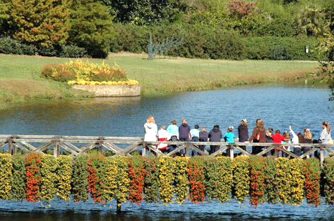 New Mirror Lake Bridge Completed