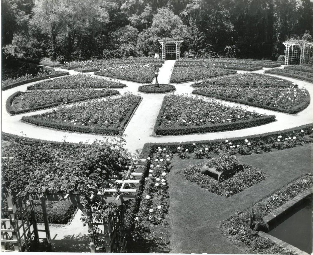 Rose Garden Completed