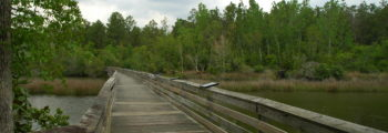 Harrigan / ExxonMobil Bayou Boardwalk Opens