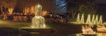 "Magic Christmas in Lights in USA Today's Top 10 ""Best Botanical Garden Holiday Light Displays in America"""