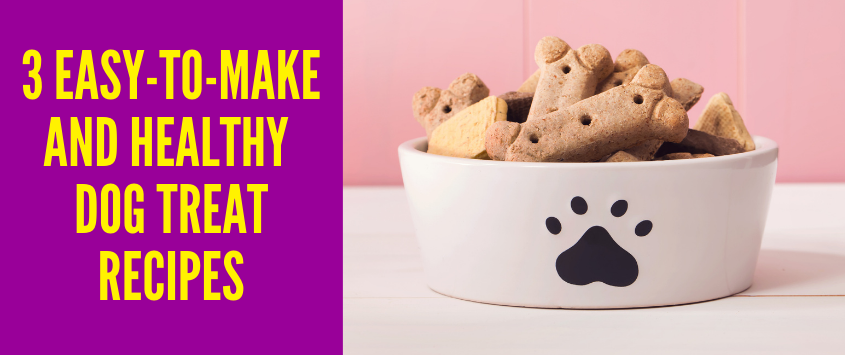 3 Easy-to-Make And Healthy Homemade Dog Treat Recipes