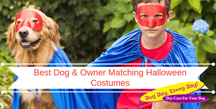 Cutest Dog and Owner Couple Halloween Costumes 2018