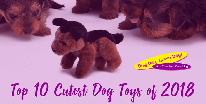 Top 10 Cutest Dog Toys