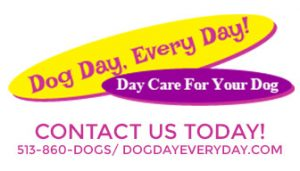 Contact Dog Day