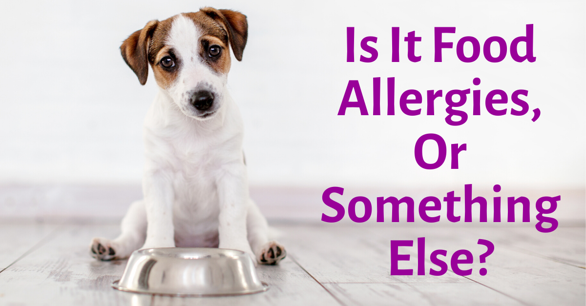 Is It Food Allergies, Or Something Else?