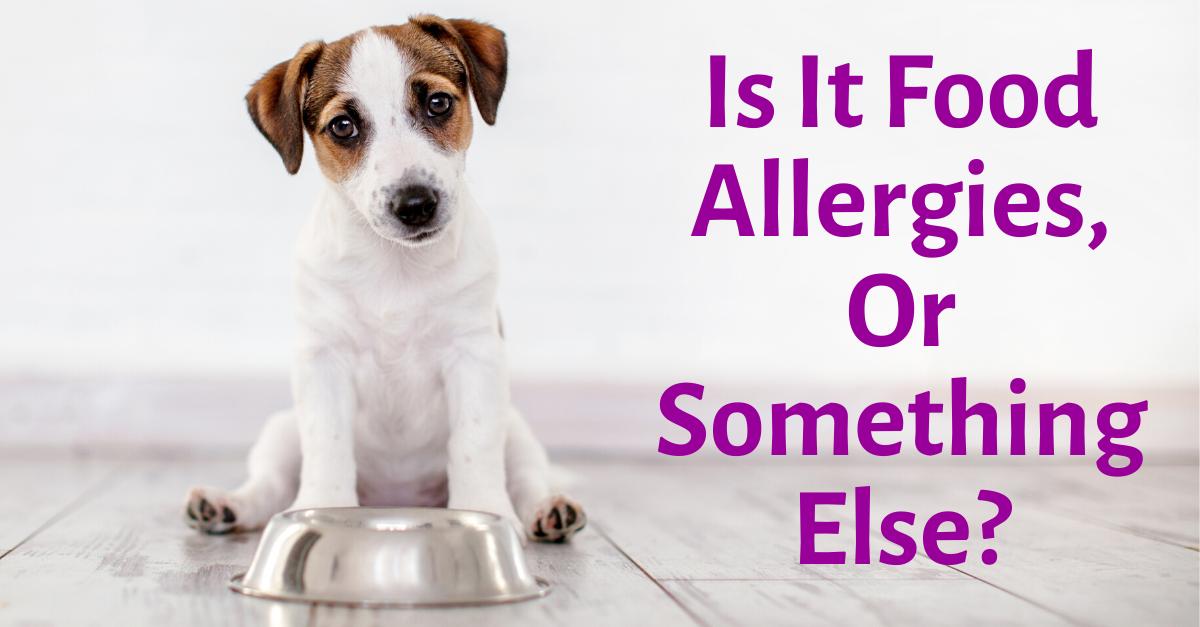 Is It Food Allergies, Or Something Else?