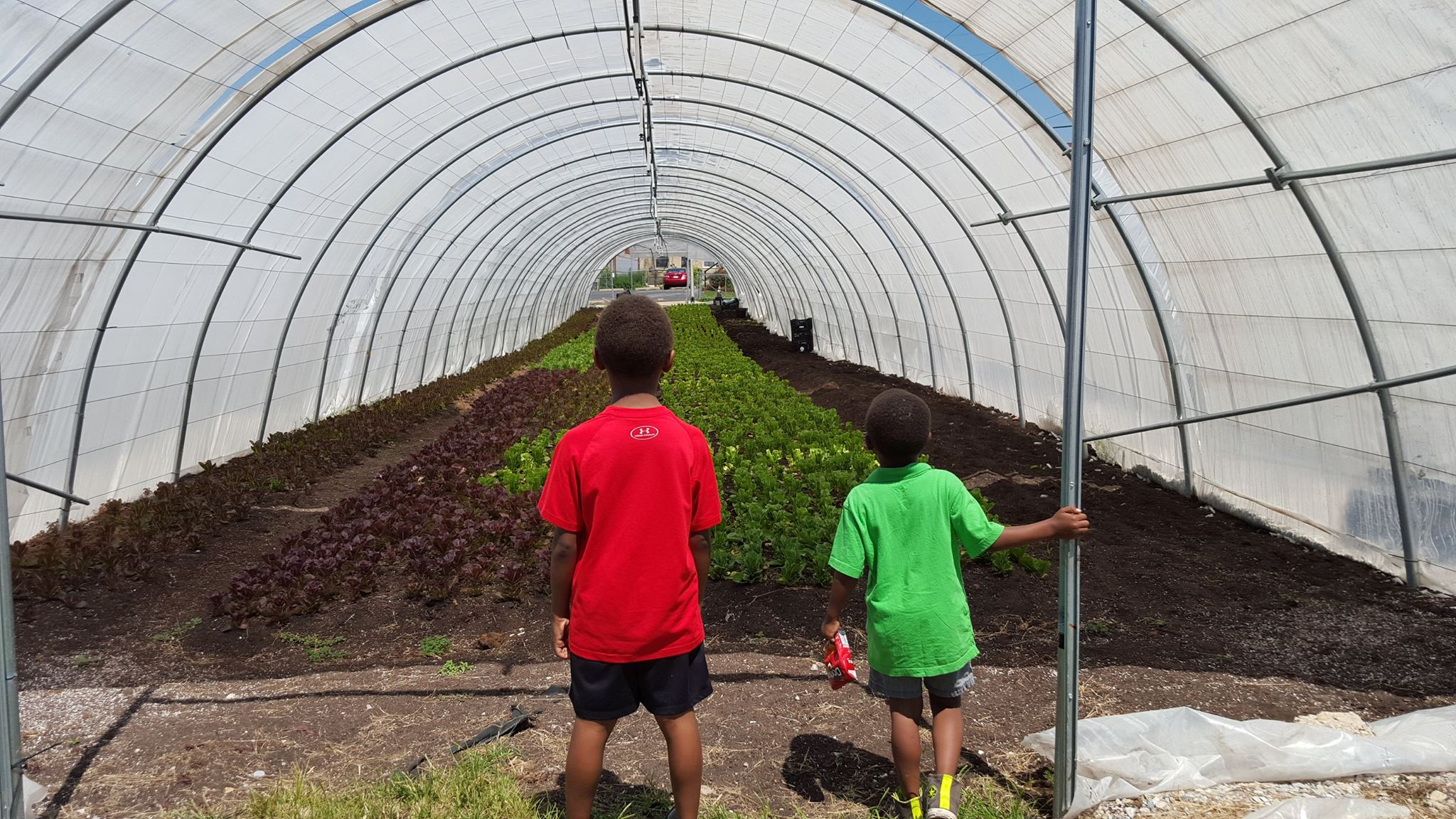 Food as Liberation: How Black Food Sovereignty is Tied to the Prison Abolition Movement
