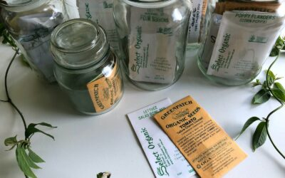 Seed Libraries – Preserving the Past for the Future