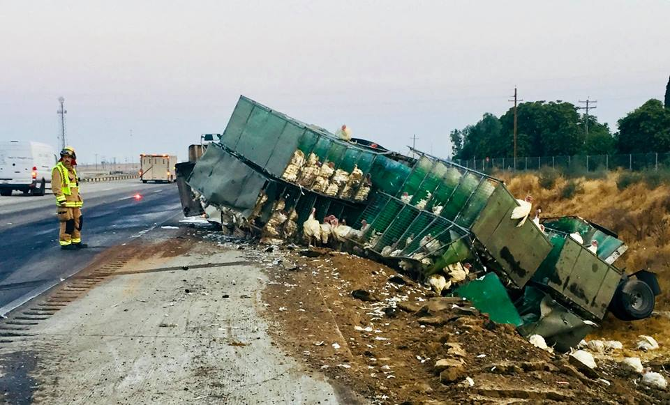Foster Farms truck overturns in Merced