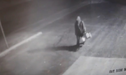 Thief Steals Gas from Livingston Car Dealership