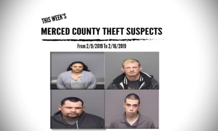 Merced County Theft Suspects From 2/9/2019 To 2/16/2019
