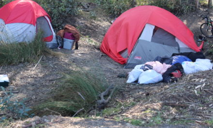 Merced County homeless count survey released